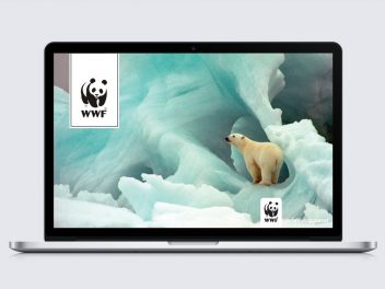 wwf-splash